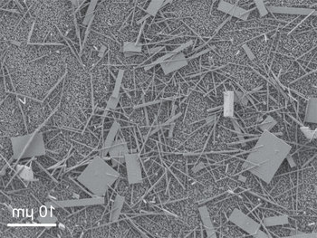 Tiny nanowire crystals are scattered haphazardly immediately following their production