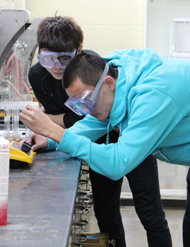 大学本科s in Chemistry 109 work with cobalt and copper complexes